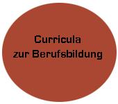 Modul - Curricula zur Berufsbildung